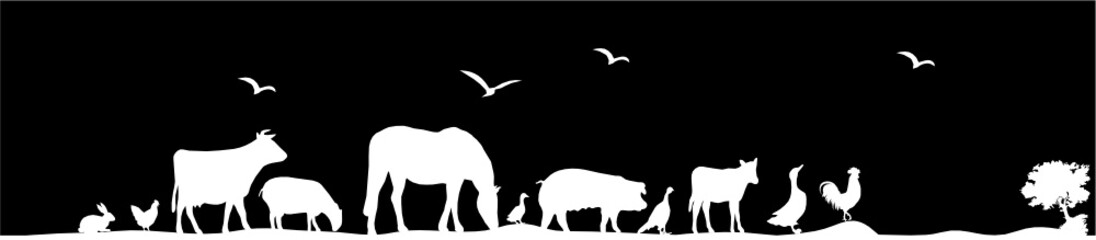 Wall Mural - ANIMAUX LA NUIT
