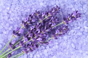 Wall Mural - Lavender
