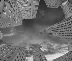 Fototapete - Black and White Skyline of Manhattan with office buildings skysc
