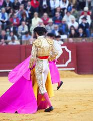 Torero  in the bullfighting arena in Spain