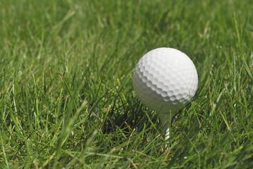 Pelota de golf en el césped 2