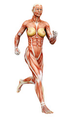 muscle woman running side view