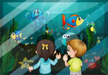 Wall Murals Submarine At the aquarium
