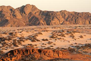 Desert landscape, Namib-Naukluft National park