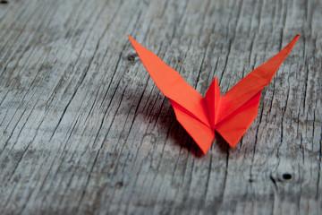 Farfalla origami