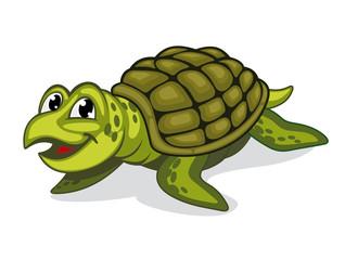 Green turtle reptile