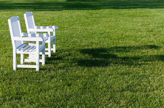 Pair of garden chairs on green lawn in garden