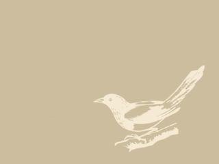 bird on brown background