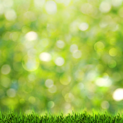 Green grass over abstract summer backgrounds with beauty bokeh