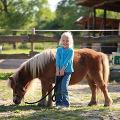 Ponys Und Pferde