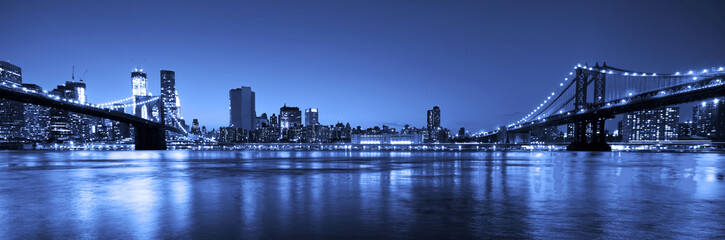 View of Manhattan and Brooklyn bridges and skyline at night