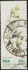 RSA - 1981: Stamp printed in the Republic of South Africa