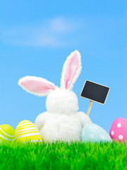 Easter bunny holding an empty blackbord