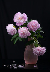 Still life with beautiful pink peonies