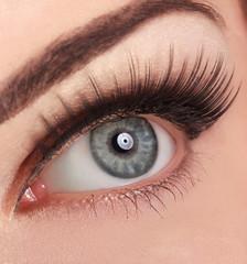 Beautiful Woman's Eye. High quality image