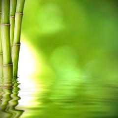 Acrylic Prints Bamboo troncos de bambú verde sobre el agua