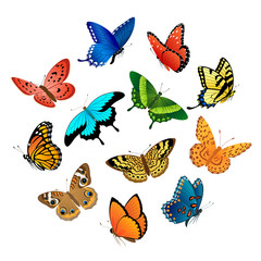 Printed kitchen splashbacks Butterflies Flying butterflies