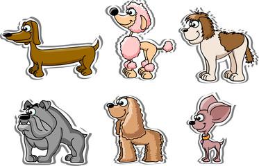 Мультфильм собак, 6 пород