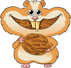 hamster eating walnuts