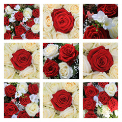 red and white rose collage