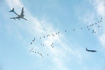 Flying geese and passing aircrafts