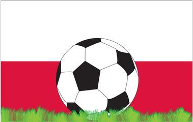 calcio polonia