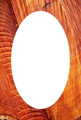 Isolated oval photoframe in cut alder background