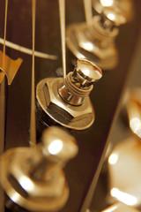 Guitar mechanics closeup