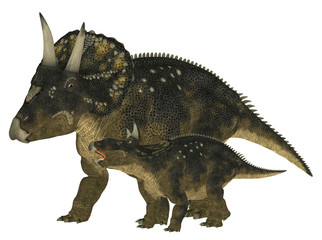 Adult and Young Nedoceratops