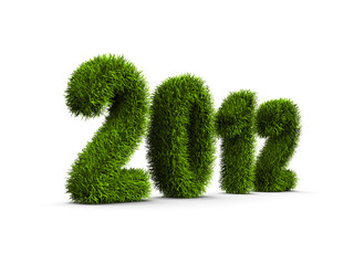 2012 new year grass concept