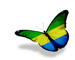 Gabonese flag butterfly flying, isolated on white background