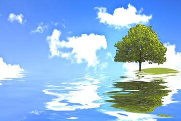 Auswirkung des Klimawandel