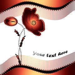 red poppy flowers  - vector illustration