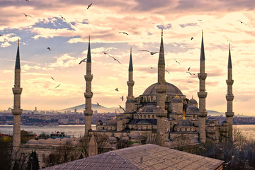 Self adhesive Wall Murals Cappuccino The Blue Mosque, Istanbul, Turkey.