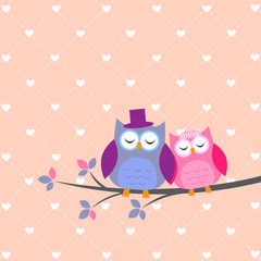 Couple owls in love