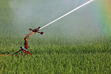 Water sprinkler system irrigating a farm field