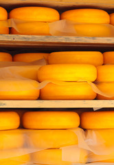 Dutch cheese ripening on wooden shelfs