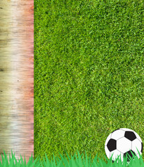 Football soccer on grass and wood background