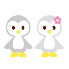 ペンギン カップル