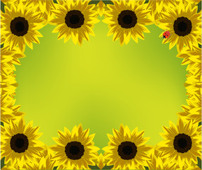 frame of yellow sunflowers on green background