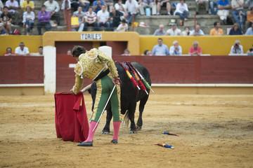 Torero sosteniendo la muleta con la mano izquierda.