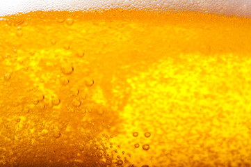 Air bubbles in beer.
