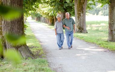 Senior couple enjoying a walk in the park