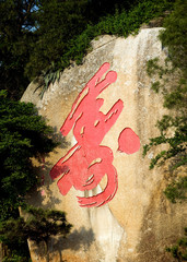 Chinese character for longevity