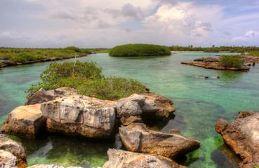 Snorkeling tropical lagunas