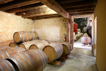 Rows of barrels in a cellar