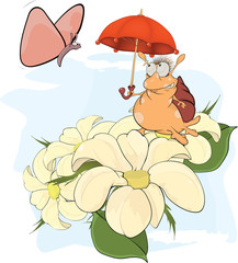 Snail and the butterfly cartoon