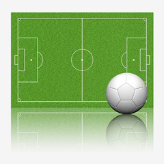 3D soccer football with reflect on white background