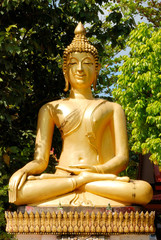The image of Buddha in the temple