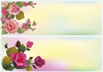 rose . postcard .